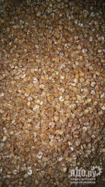 Продам крупу пшеничную мягкую от производителя