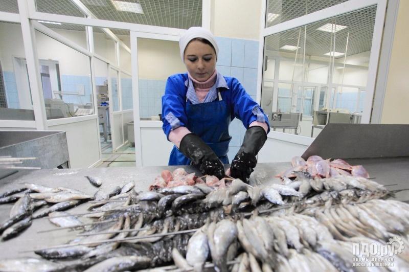 Получение рыба промыслового участка