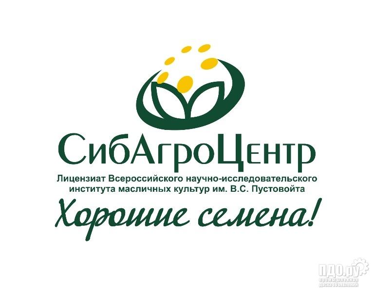 Семена высокопродуктивных масличных сортов подсолнечника