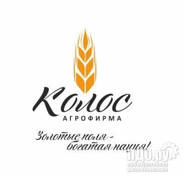 Семена Люцерны в Наличии 5 тн!
