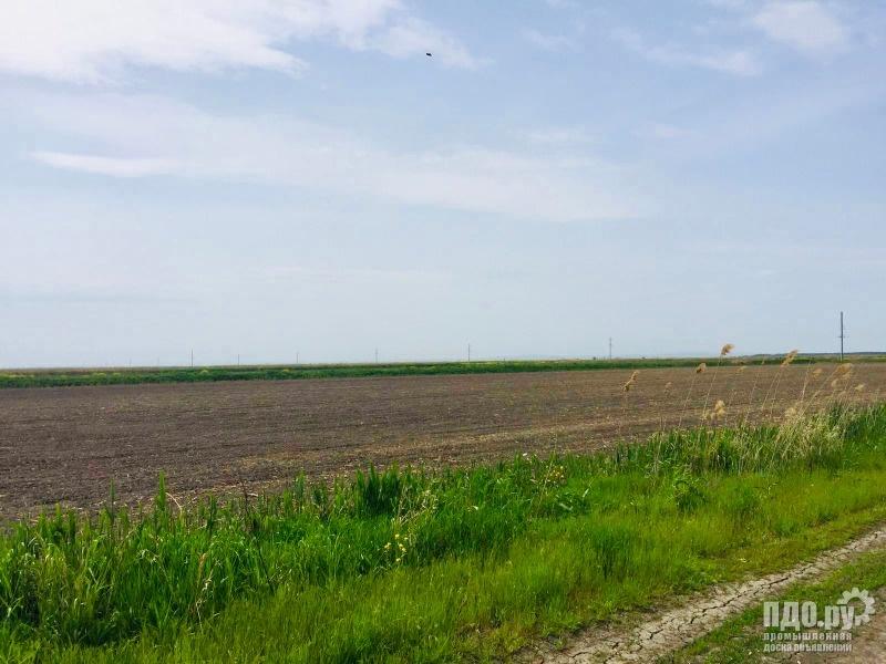 Рисовая система  225 Га в Славянском районе