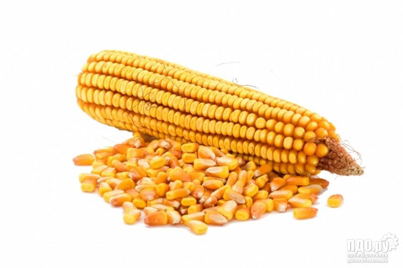 Кукуруза!Пшеница дурум!Лён!Чечевица!Предоплата!СРТ Ростов.