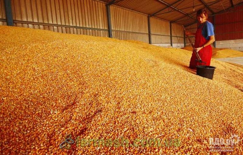 Пшеницу!Кукурузу!Лён!Нут!Предоплата