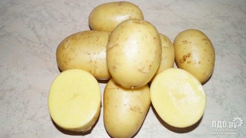 Семенной картофель репродукция Элита