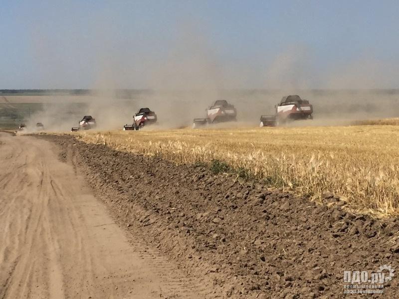 Уборка урожая по РФ комбайнами Торум 740, 750 Акростих