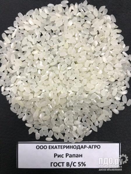 Рис кубанский от производителя
