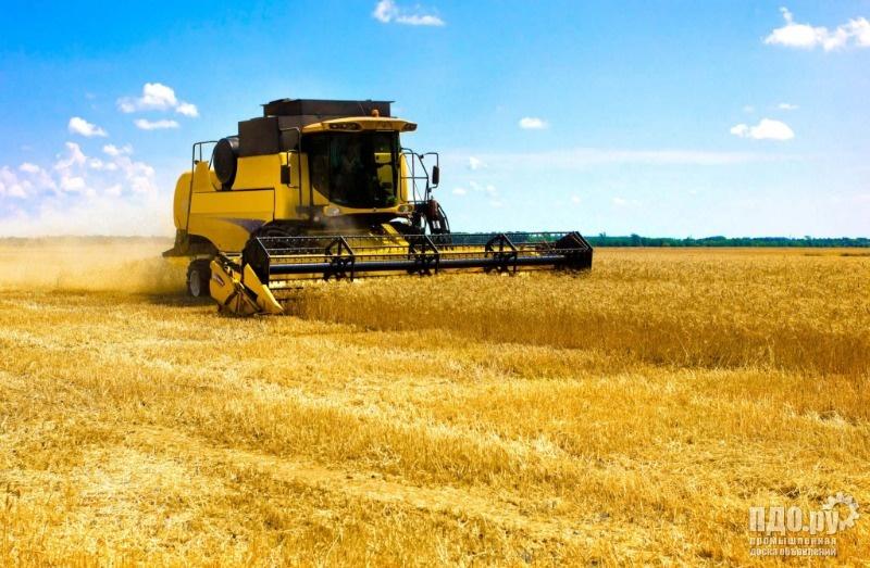 Требуются комбайны на уборку пшеницы