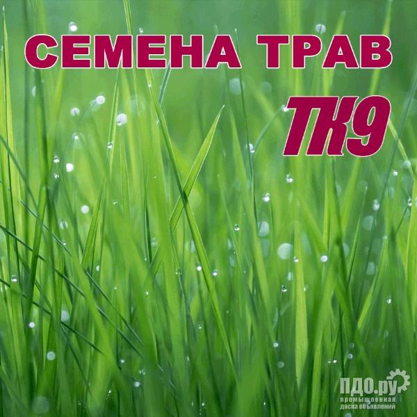 ТК9: Семена многолетних трав