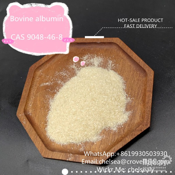 Factory Bovine albumin price CAS 9048-46-8 from China suppliers.WhatsApp8619930503930